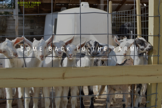 goodale farms, madtempest, suffolk county web design